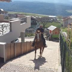 Trekking a cavallo: in vacanza con l'amico a 4 zoccoli